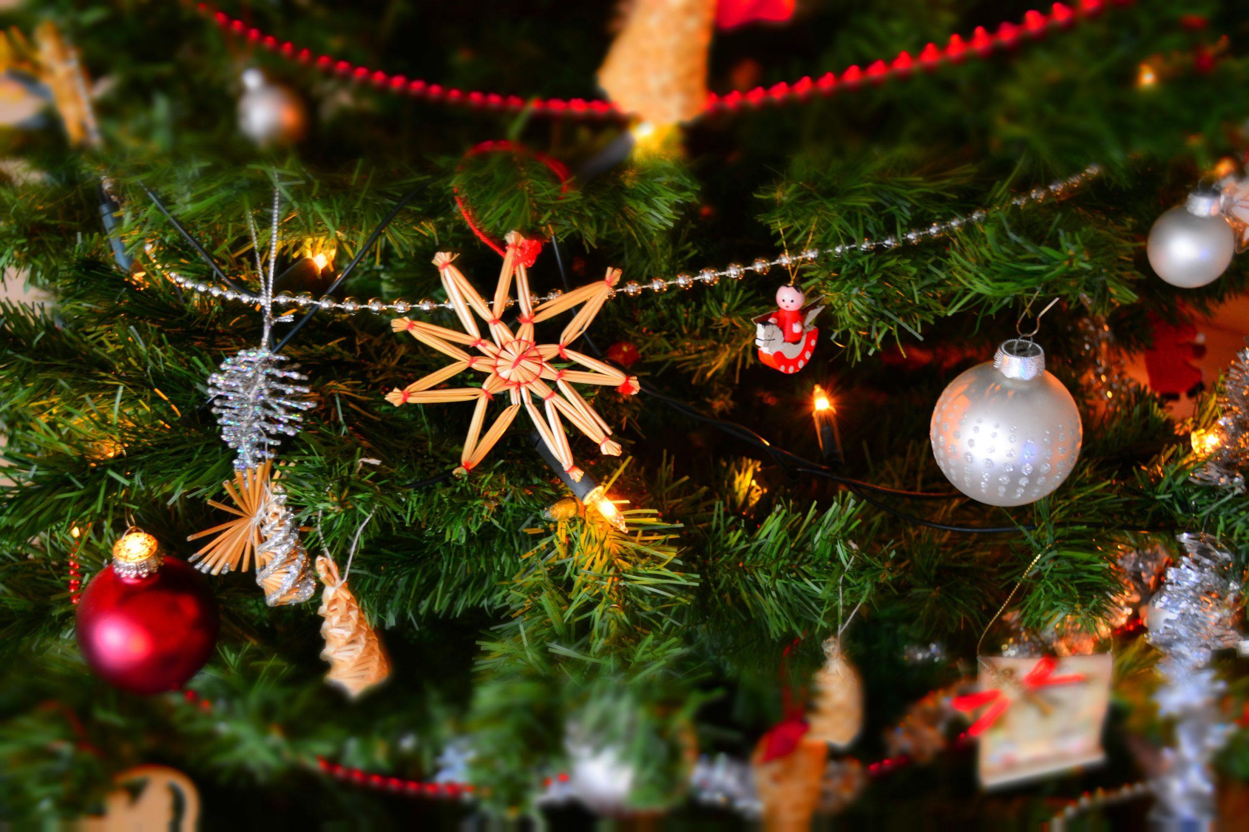 Parcel Puma your Christmas parcels